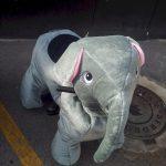 animacion-infantil-castellon-atracciones-animals-riders-13-FEB18-4