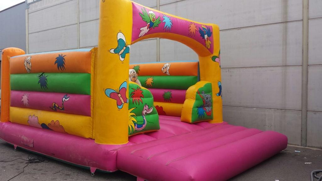 animacion-infantil-castellon-hinchables-sr-0517-3
